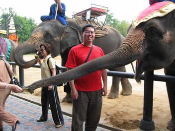 原博客图题: 去泰国玩