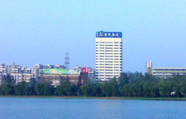 1984-1997(47-60岁)奉调在中石化(南京)金陵石化公司担任副总经理直至退休