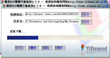 "维棠FLV视频下载软件7.0"","