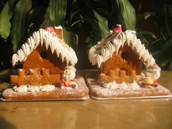 the ginger house and ginger biscuit that was bought in December 2006 in Nanjing Grand Hotel (In Nanjing of China)
