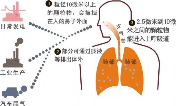PM2.5对人体的危害很大