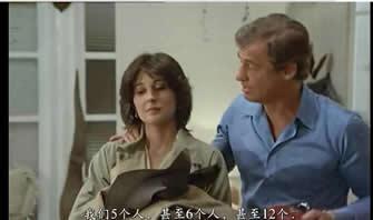 Le Professionnel / The Professional (1981)