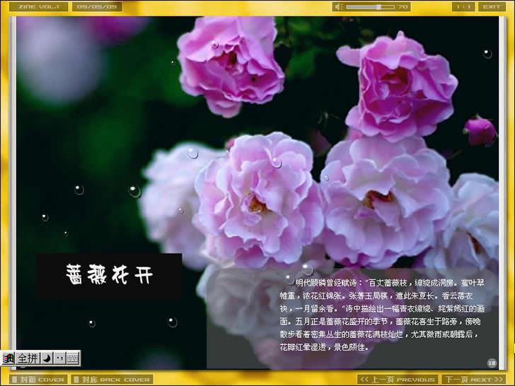 电子杂志-蔷薇花开