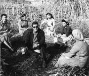 Giuseppe De Santis 朱塞佩・德・桑蒂斯 (1917-1997)