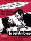 英俊的安东尼奥 Il Bell'Antonio